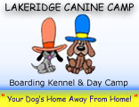 Lakeridge Canine Camp